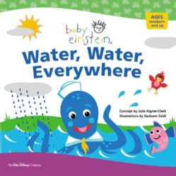 Water, Water Everywhere: A Splash & Giggle Bath Book (Paperback)