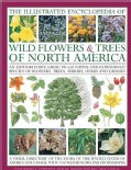The Illustrated Encyclopedia of Wild Flowers & Trees of North America: An Authoritative Guide to 650 Native and I... (Hardcover)