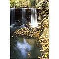 Kurt Shaffer 'Autumn Falls' Gallery-wrapped Canvas Art