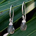 Labradorite 'Subtle' Dangle Earrings (Thailand)