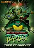 Teenage Mutant Ninja Turtles: Turtles Forever (DVD)