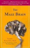 The Male Brain (Paperback)