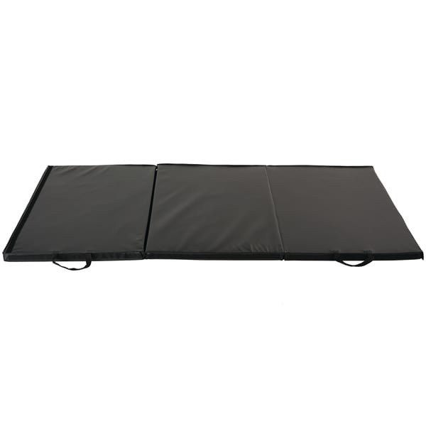 Sunny Folding Gym Mat 6973551