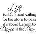'Life Dance Rain' Vinyl Wall Art Quote