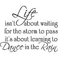 'Life Dance Rain' Vinyl Wall Art Quote