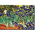Vincent Van Gogh 'Irises, Saint-Remy' Canvas Art
