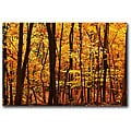 CATeyes 'Delicious Autumn' Gallery-wrapped Canvas Art