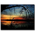 CATeyes 'Luminous Essence' Gallery-wrapped Canvas Art