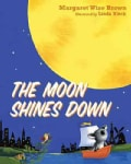 The Moon Shines Down (Board book)