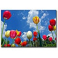 CATeyes 'Heaven' Gallery-wrapped Canvas Art