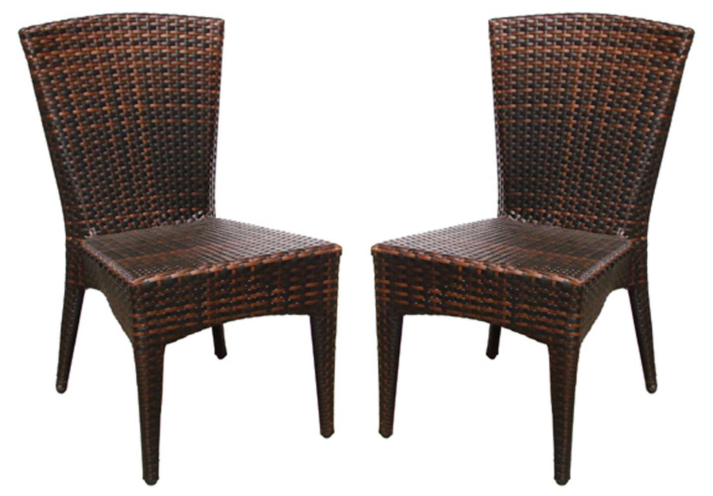 Safavieh Hamptons Shore Wicker Stackable Outdoor Chairs (Set of 2)