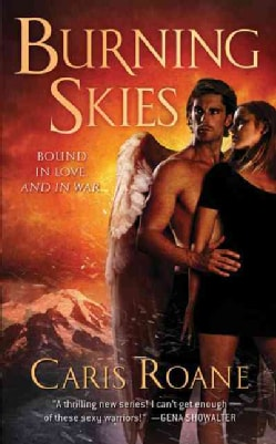 Burning Skies (Paperback)