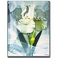 Kathie McCurdy 'Sheer White Iris' Medium Canvas Art
