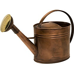Handcrafted Americana Farmhouse Friends Gentle Rain Watering Can
