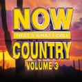 Various - Now That's What I Call Country Volume 3