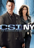 CSI: NY: The Complete Sixth Season (DVD)