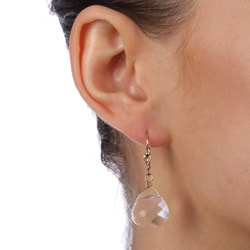Charming Life 14k Goldfill Clear Crystal Briolette Earrings