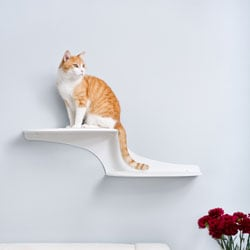 The Refined Feline Cat Clouds Cat Shelf