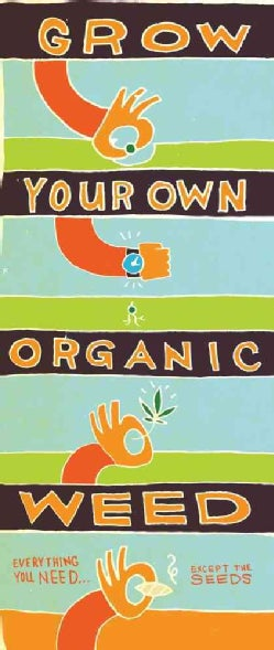 Grow Your Own Organic Weed!: Everything You Need... Except the Seeds (Paperback)