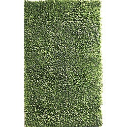 Soft Cotton Sage Green Shag Rug (3'6 x 5'6)