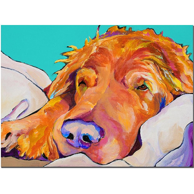 Pat Sanders-White 'Snoozer King' Canvas Art
