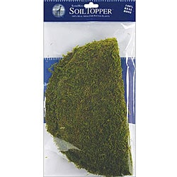 Green 12-inch Moss Pot Toppers (Pack of 3) to Keep Plants Moist