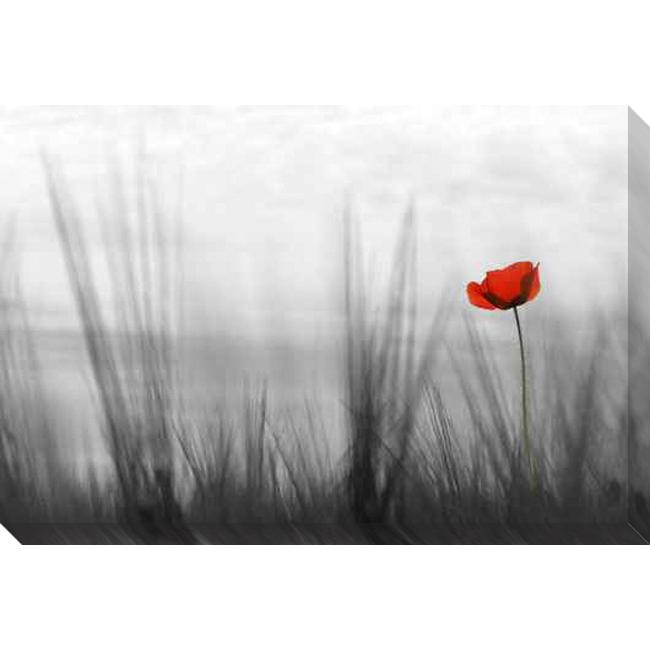 Gallery Direct 'Coquelicot' Giclee Canvas Art