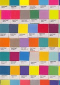 Pantone Chip Journal (Notebook / blank book)