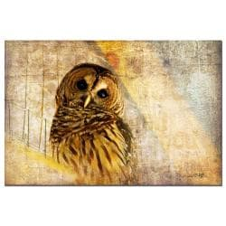Lois Bryan 'Owl' Canvas Art