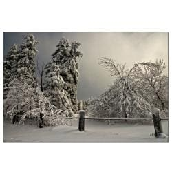 Lois Bryan 'Winter Scene II' Medium Horizontal Gallery-Wrapped Canvas Art