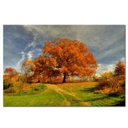 Lois Bryan 'Fall Scene II' Canvas Art