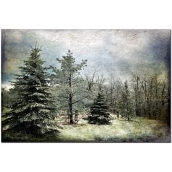 Lois Bryan 'Frosty' Horizontal Canvas Art