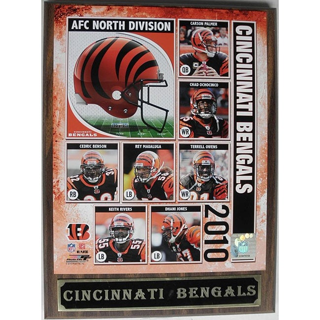 Cincinnati Bengals 2010 Collectible Photo Plaque