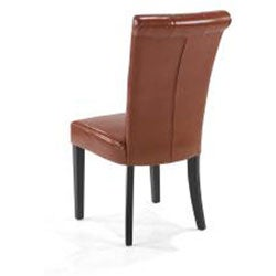 Euro-modern Burnt Orange Dining Chairs (Set of 2)