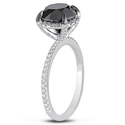 Miadora 10k White Gold 3 3/4ct TDW Black and White Diamond Ring (G-H, I2-I3)