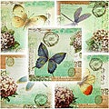 Set of 5 'Dragonfly & Butterfly' Canvas Wall Hangings (China)