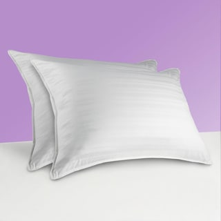 Sealy 300 Thread Count Down Alternative Pillows (Set of 2)