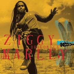 Ziggy Marley - Dragonfly