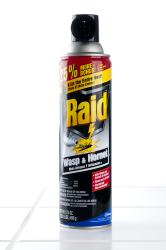 Raid Wasp & Hornet Killer 17.5 oz (Pack of 4)