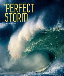 The Perfect Storm (Hardcover)