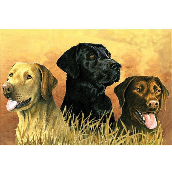 Reeves Artist Collection 'Labs in Marsh' Paint by Number