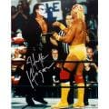 Steiner Sports Hulk Hogan With Sting 16x20 Photograph