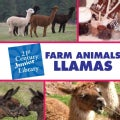 Farm Animals: Llamas (Hardcover)