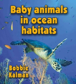 Baby Animals in Ocean Habitats (Paperback)