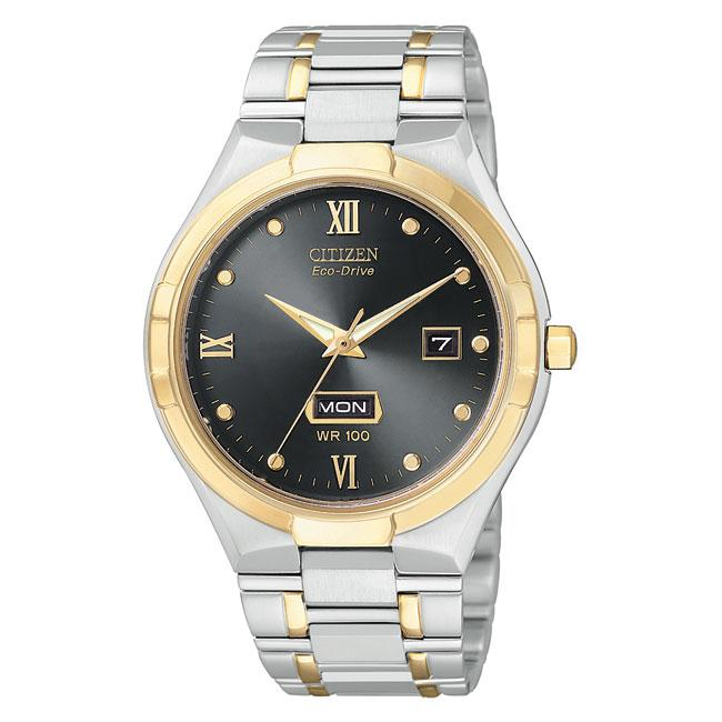 citizen s gold and silver stainless steel calendar