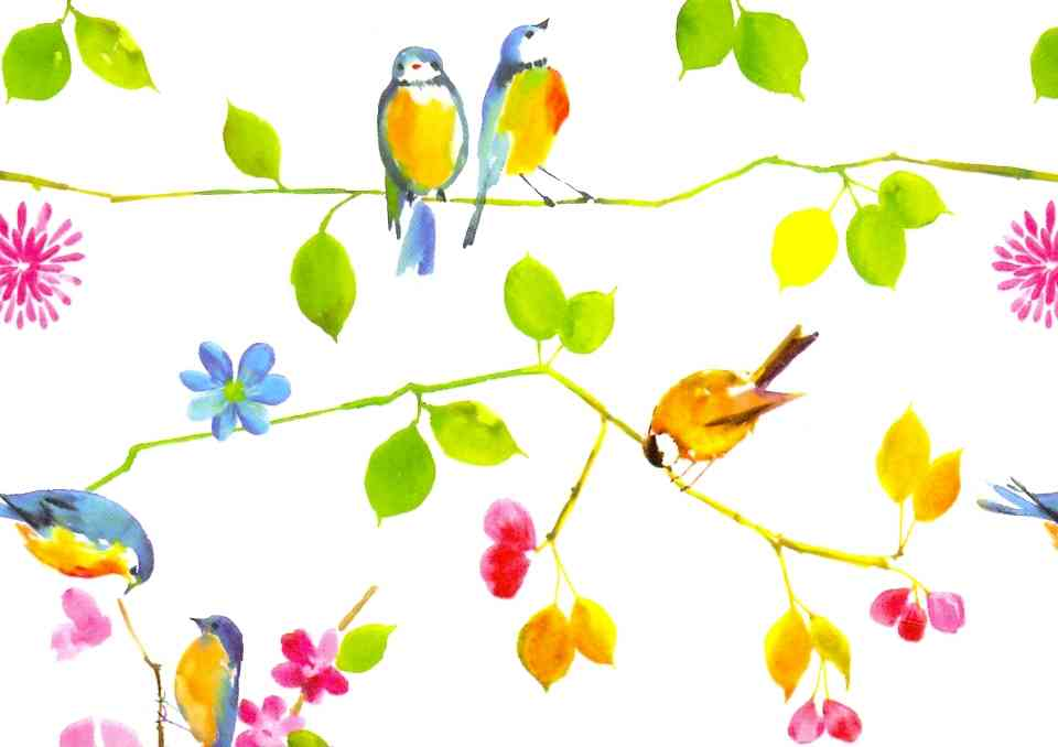 Watercolor Birds Notecards (Cards)