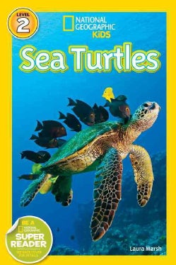 Sea Turtles (Paperback)