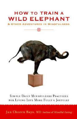 How to Train a Wild Elephant: And Other Adventures in Mindfulness (Paperback)