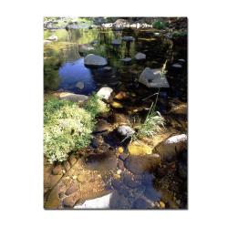 Kurt Shaffer 'Oak Creek, Sedona, AZ' Canvas Art