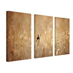 Lois Bryan 'Joyful, Joyful, All Rejoicing' 3-panel Art Set